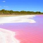 Conheça o lago cor de rosa na Austrália