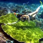 Indonésia Parte VII – Bali (Nusa Lembongan)