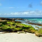 Jervis Bay, a areia mais branca do mundo no sul da Austrália