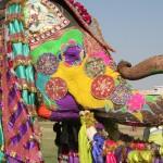 19 festivais lendários do mundo para você colocar na sua lista