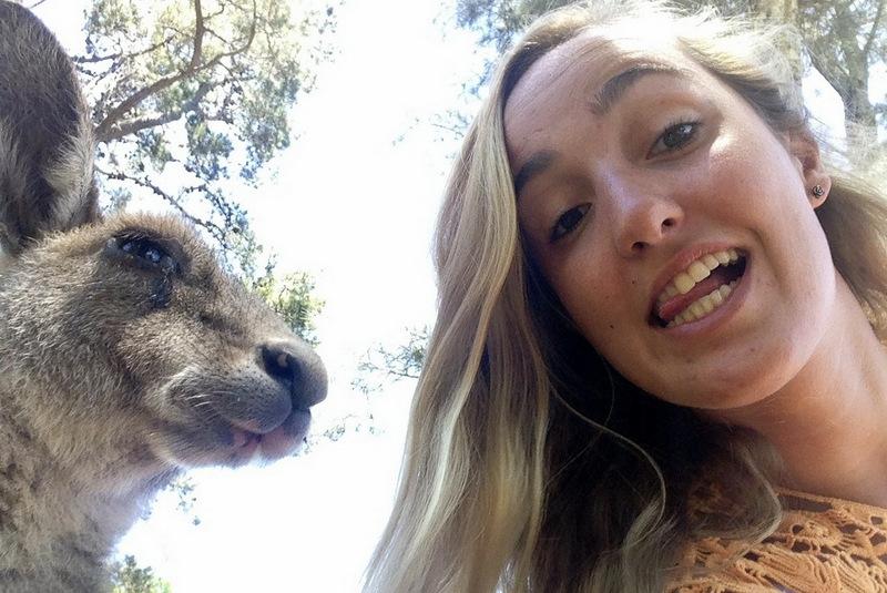 selfie com canguru