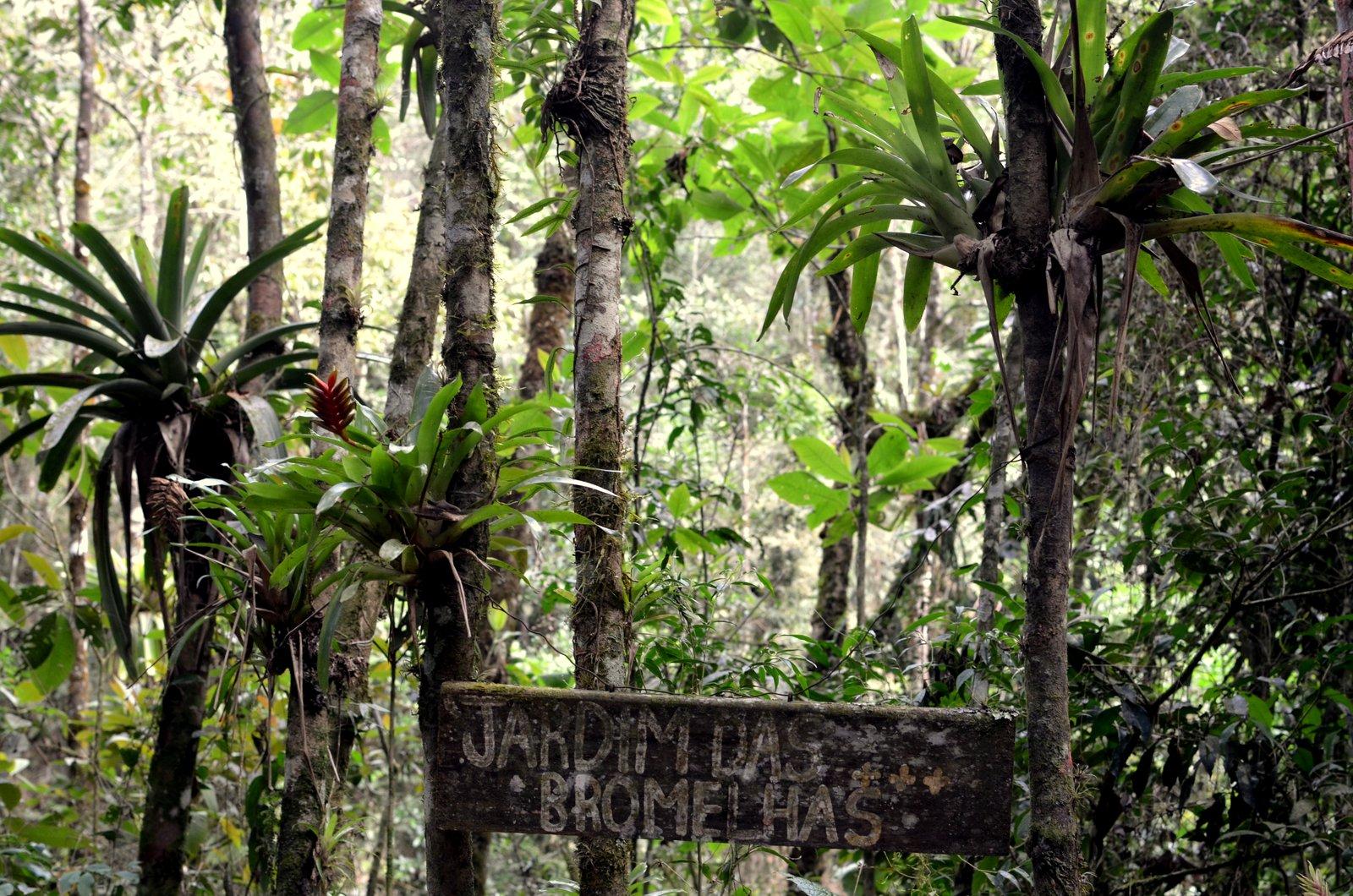 parque cachoeiras do alcantilado