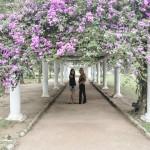 Mala de Aventuras Explora: Jardim Botânico