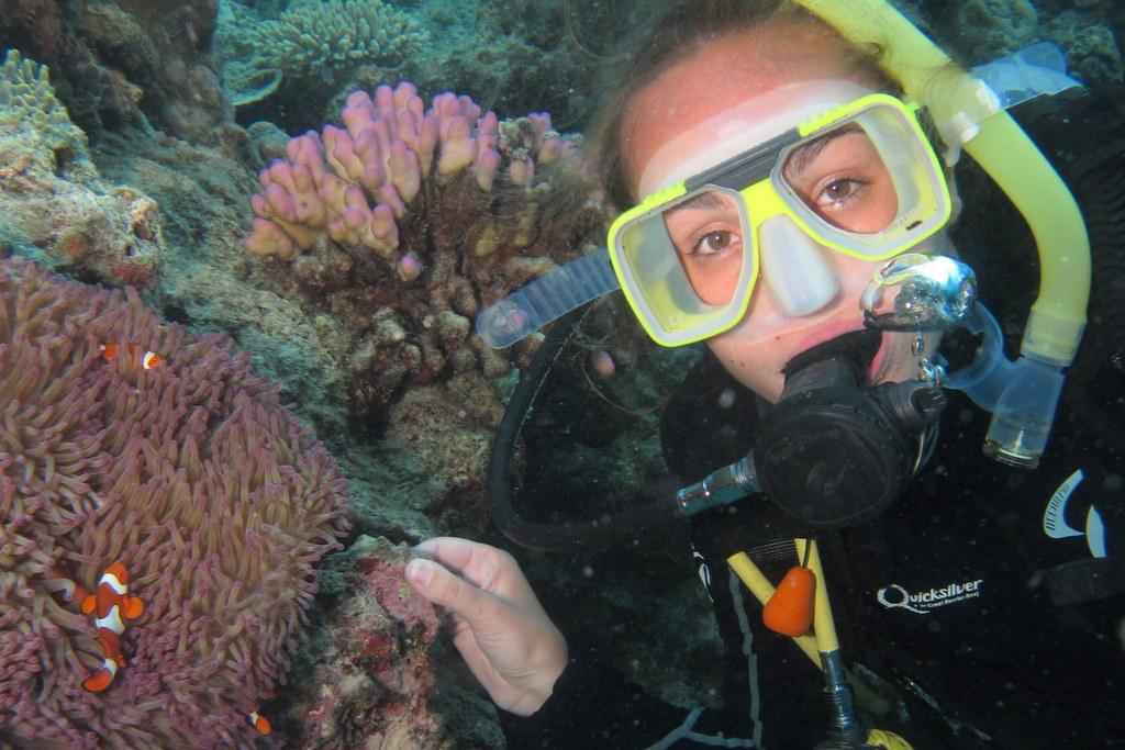 O que conhecer na australia: grande barreira de corais