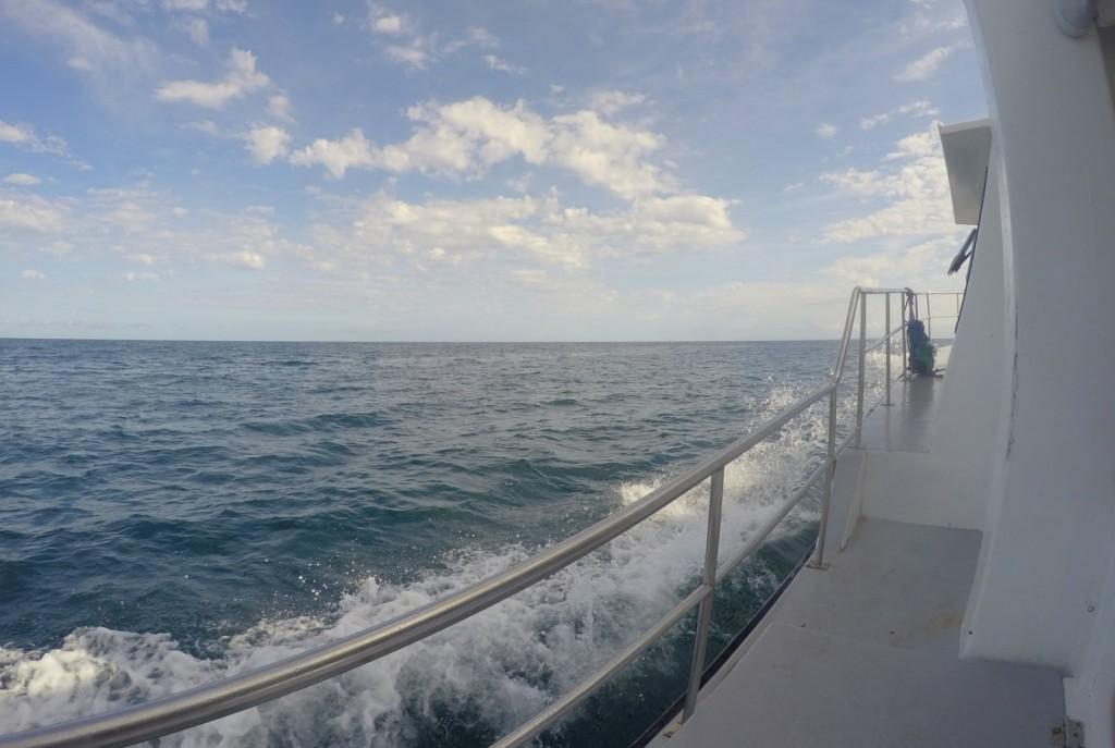 Catamarã Morro de SP