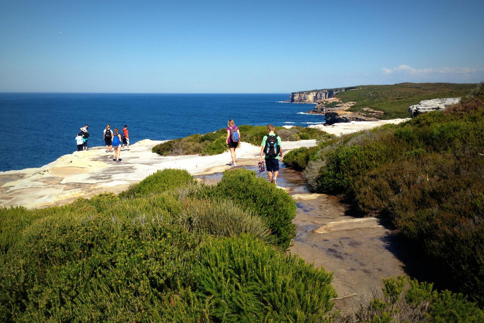 o que conhecer na australia: royal national park