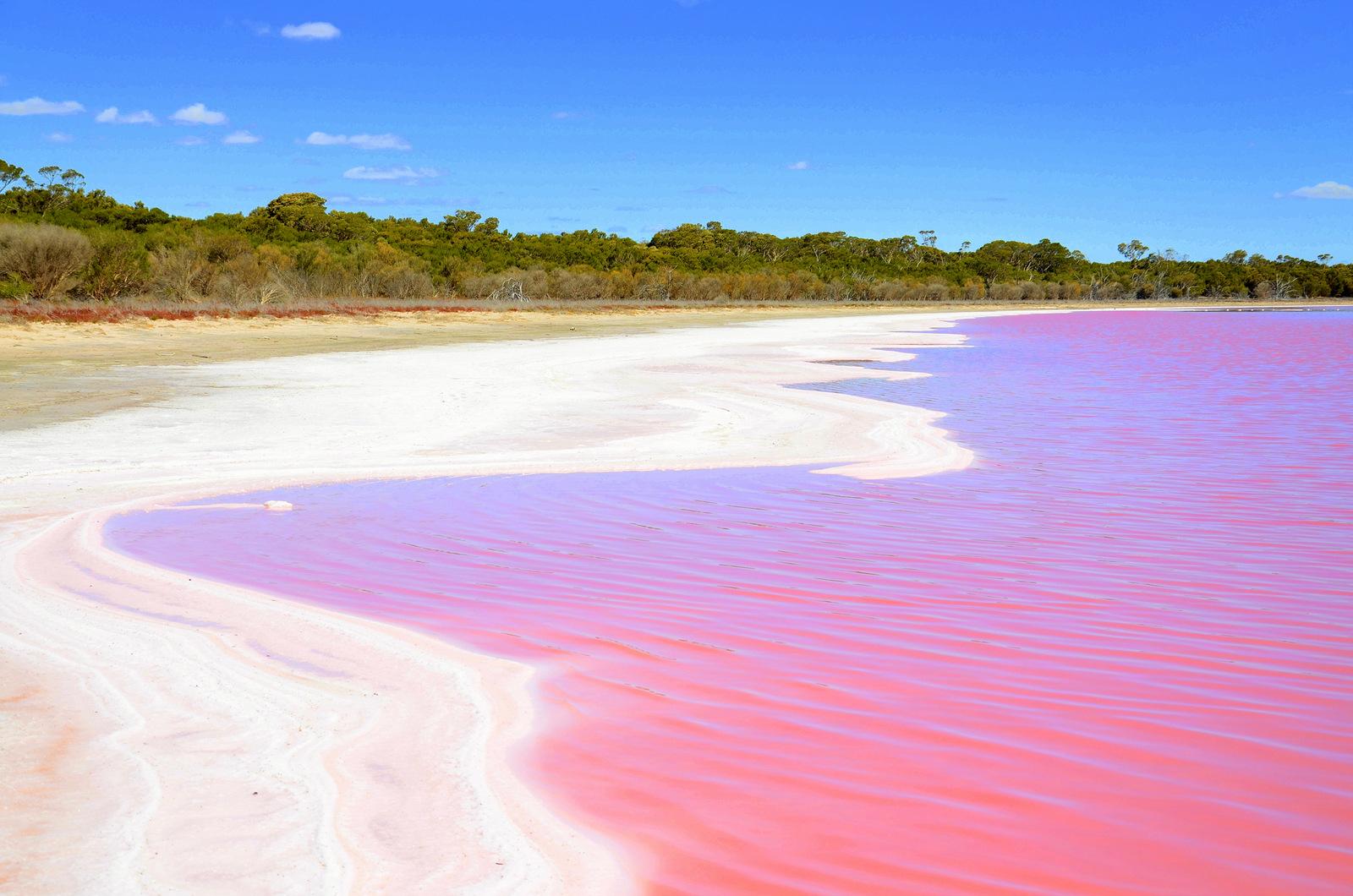 lago cor de rosa na australia