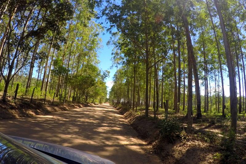 estrada caraíva