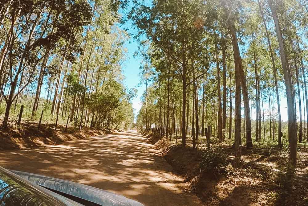 costa do descobrimento estrada