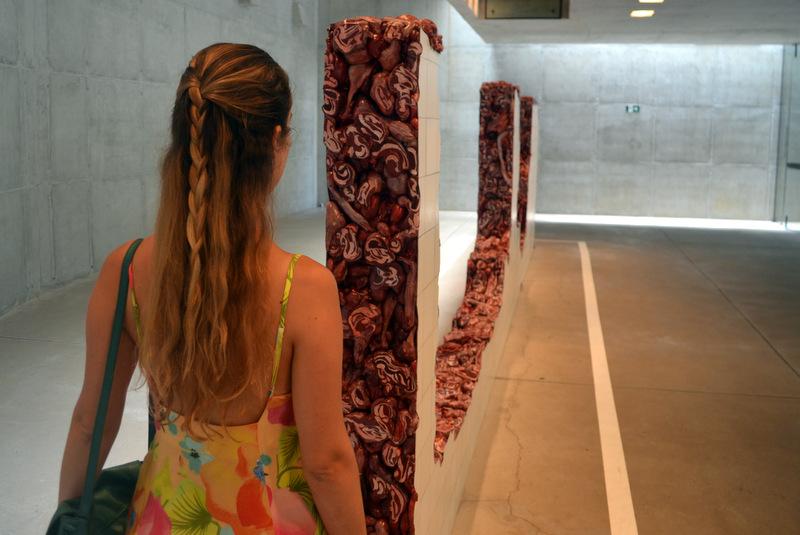 galeria adriana varejão inhotim