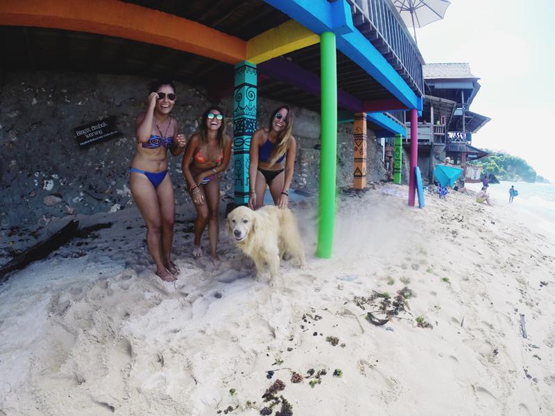 Bima Dog Bingin Beach Bali