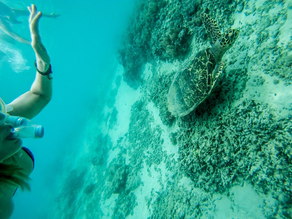 Snorkel em Gili Islands