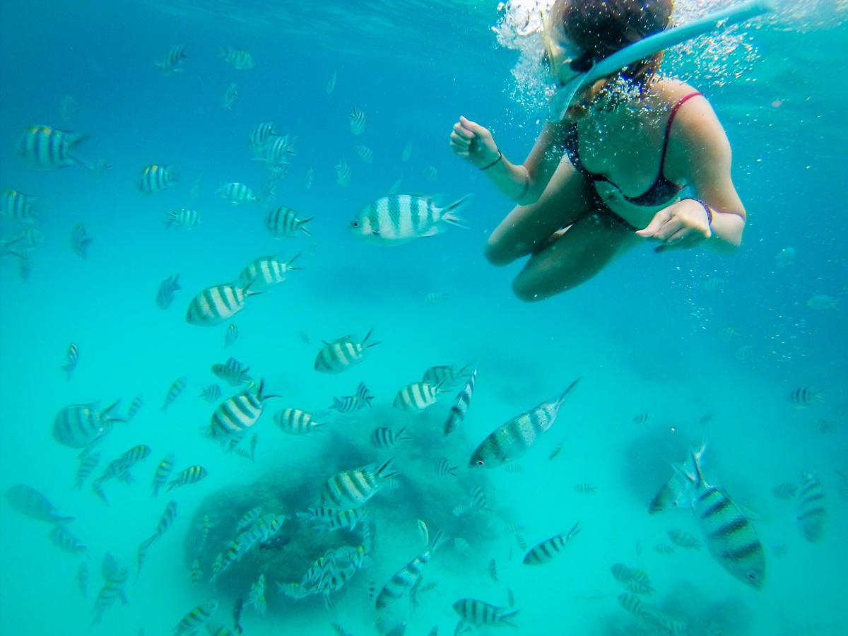 Foto embaixo d'água com a Gopro