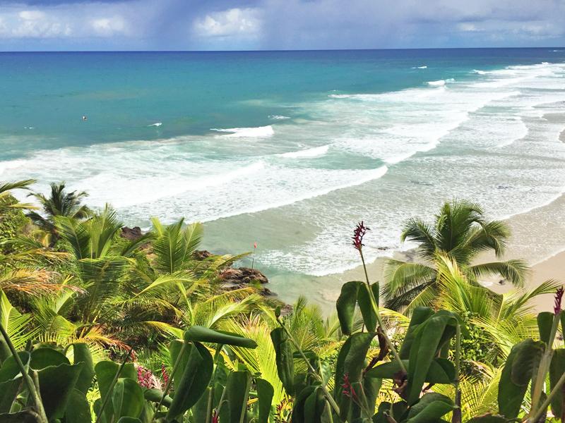 trilha praia do itacarezinho itacaré