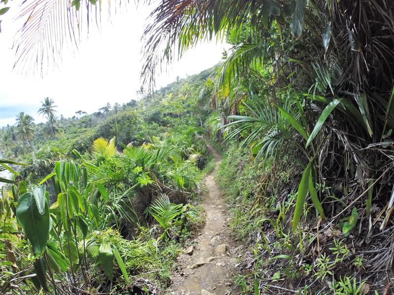 trilha praia do havaizinho itacaré