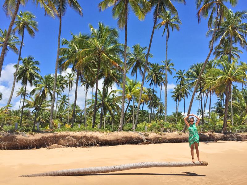 Peninsula de Maraú Bahia