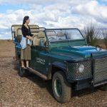 Gondwana Game Reserve: Safári imperdível próximo a Cape Town
