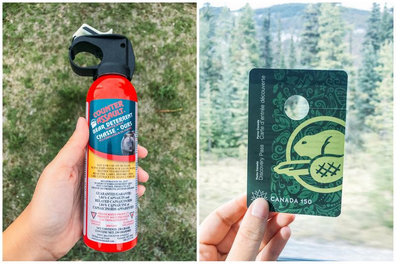 Spray anti urso (esquerda) e Parks Canada permit (direita)