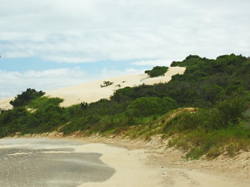 Paisagem das dunas da Praia da Joaquina