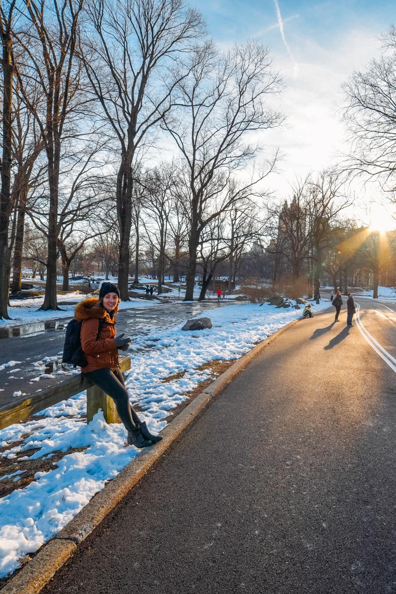 Central Park coberto de neve!