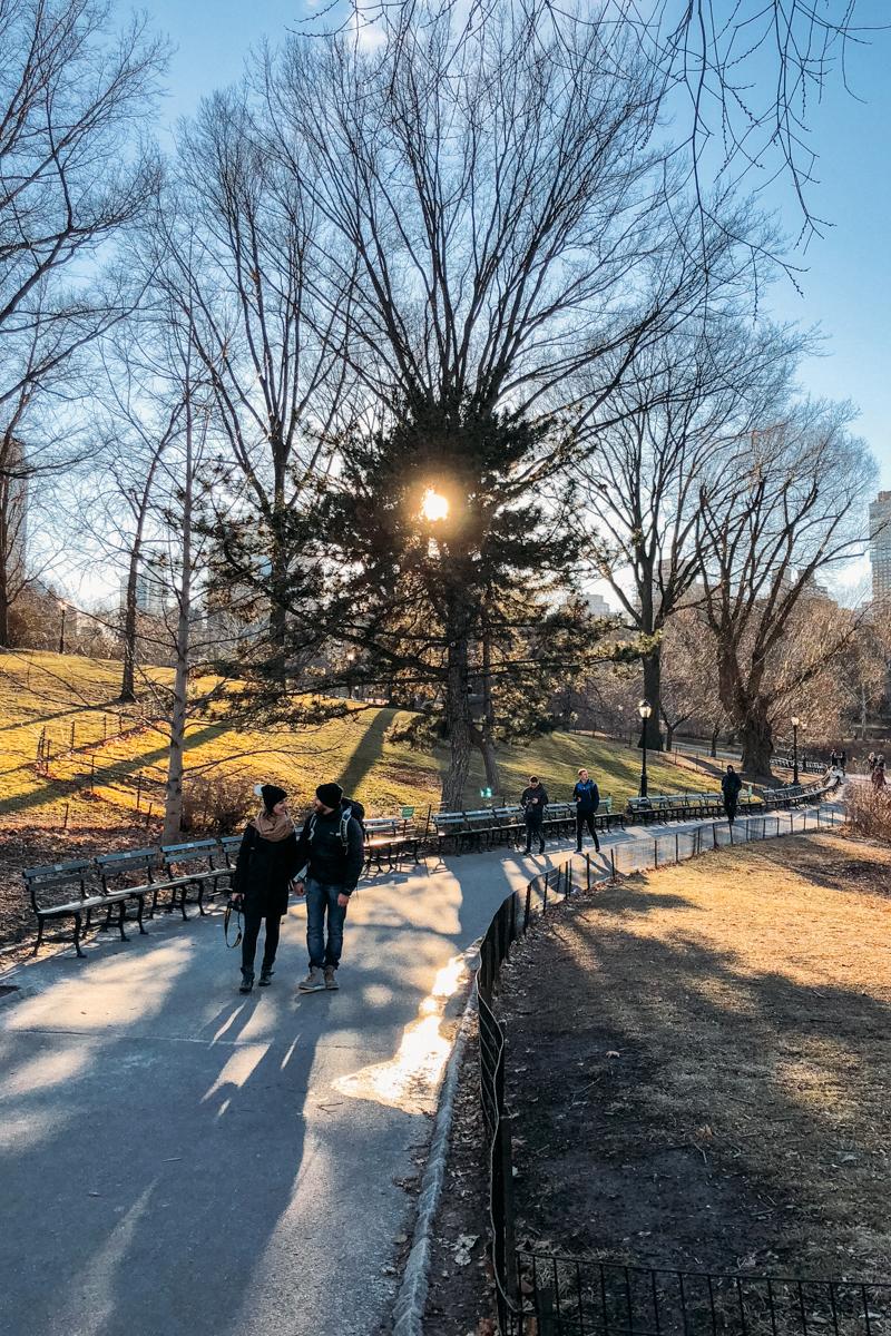 Tarde de outono no Central Park