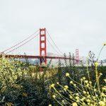 São Francisco em 48 horas: o que fazer na cidade em dois dias