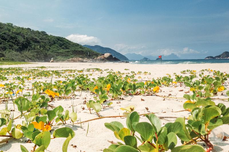Guia completo das melhores praias do Rio de Janeiro