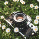 Lente 50mm: porque você deveria investir em uma