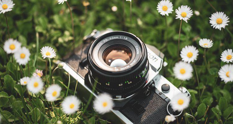 lente 50mm