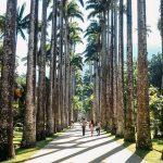 O que fazer no Jardim Botânico | Rio de Janeiro