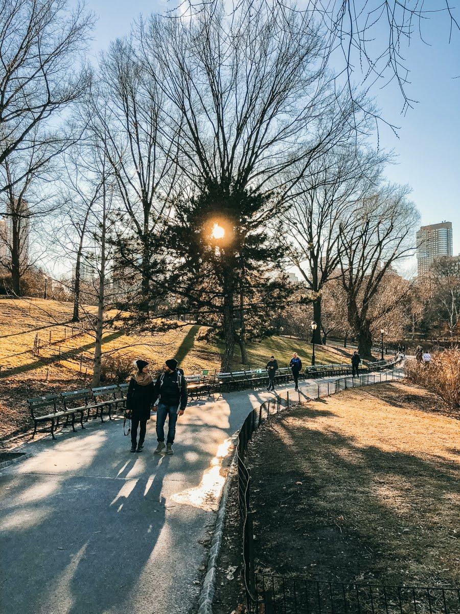 Passeio pelo Central Park no inverno