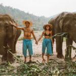 Santuário de elefantes na Tailândia: qual escolher e quanto custa