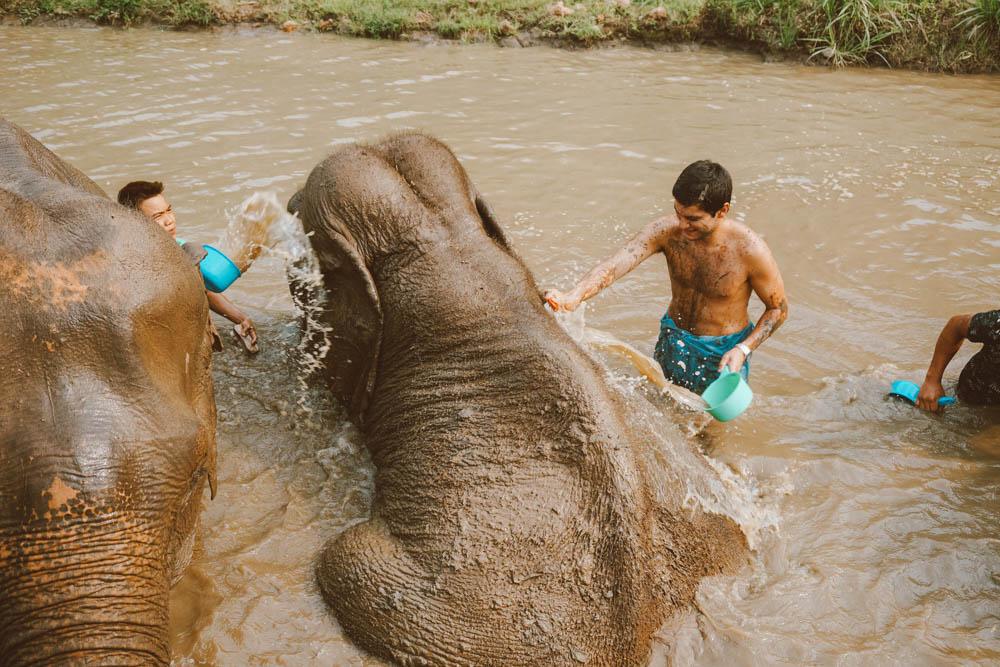 banho elefantes tailândia