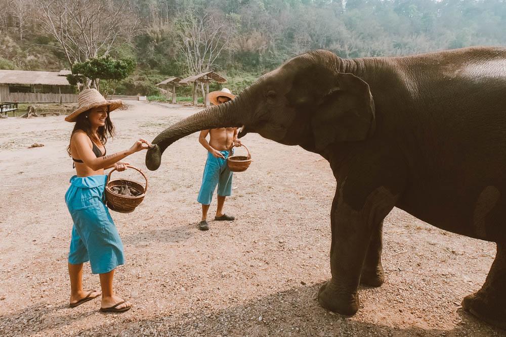 lanna kingdon Sanctuary