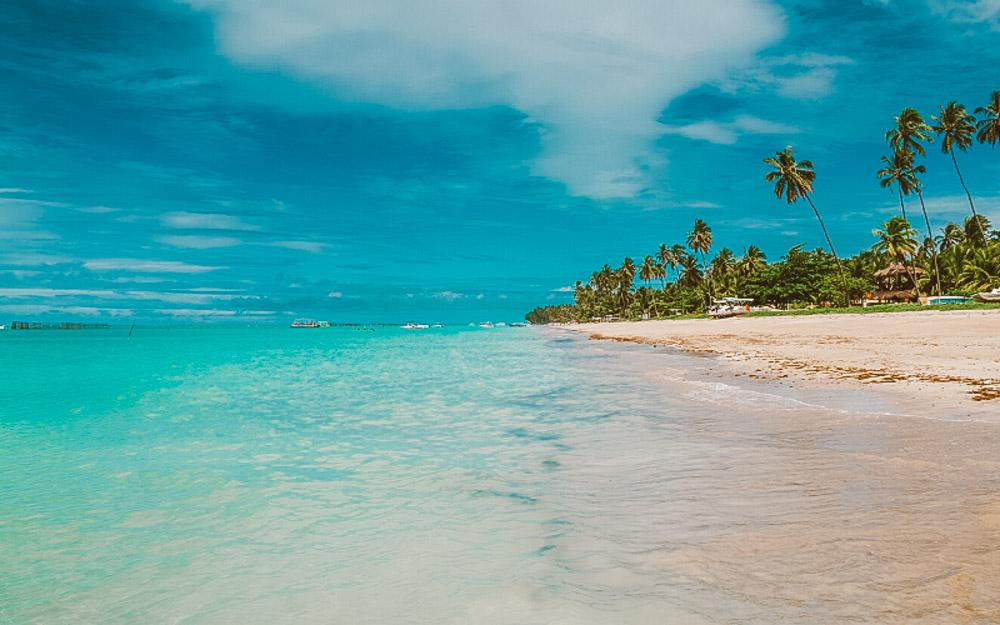 caribe brasileiro maragogi