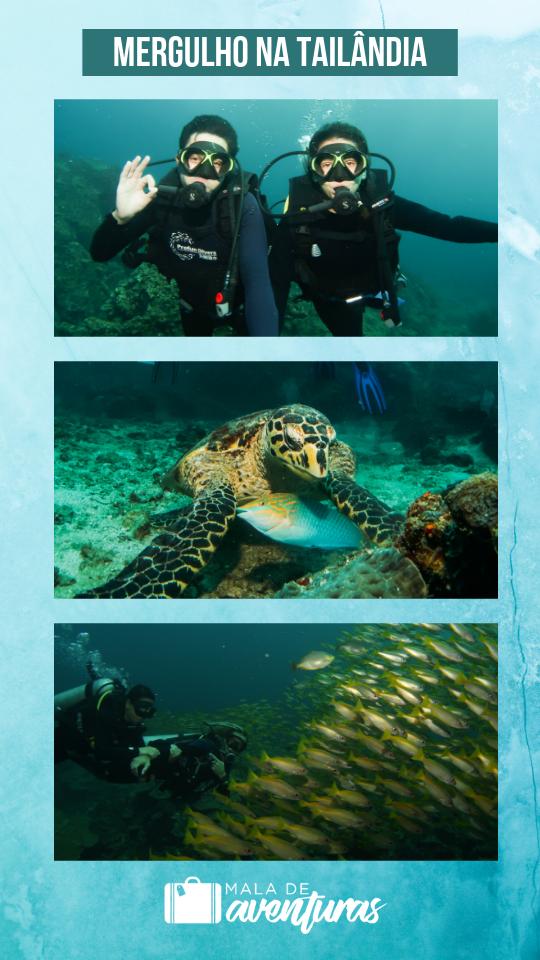 Mergulho na Tailândia: onde mergulhar em Koh Phi Phi