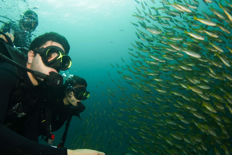 cardume-mergulho-tailandia