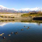 O que fazer em Mendoza: 10 passeios imperdíveis para incluir no seu roteiro