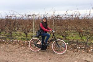 Mendoza, Argentina: GUIA da cidade + sugestão de ROTEIRO para 3, 5 e 7 dias de viagem