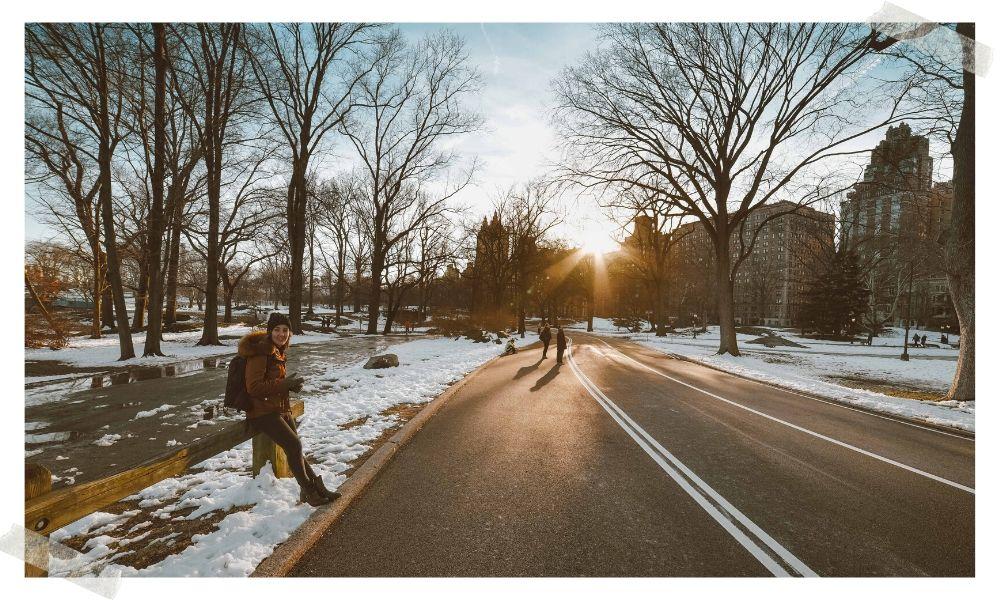 central park no inverno