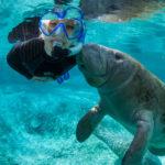 Crystal River: águas azuis e mergulho com peixes-boi a 2h de Orlando