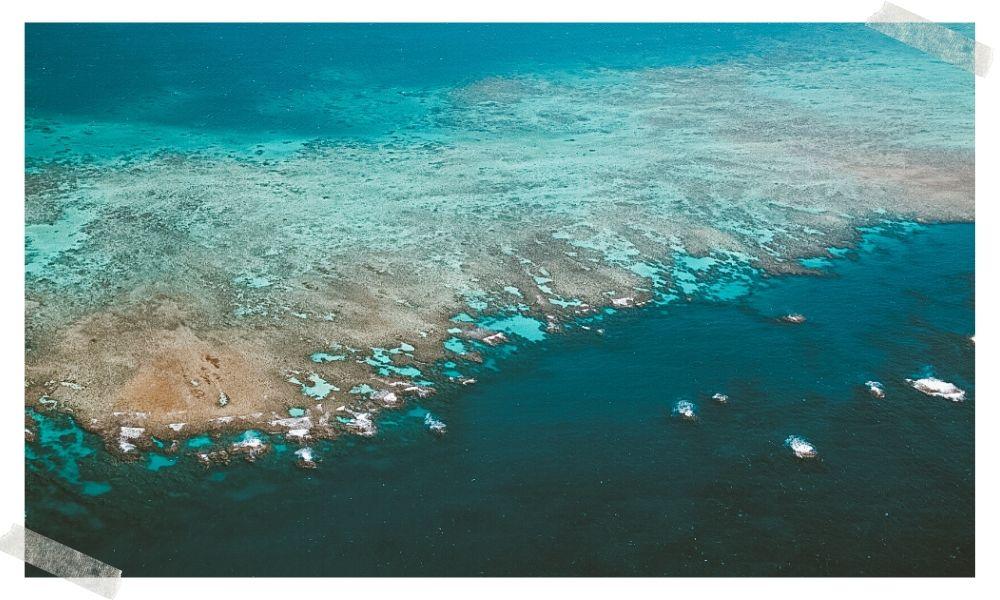 para onde viajar em agosto para mergulhar