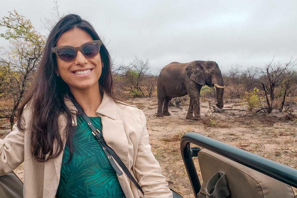 safari kruger elefante