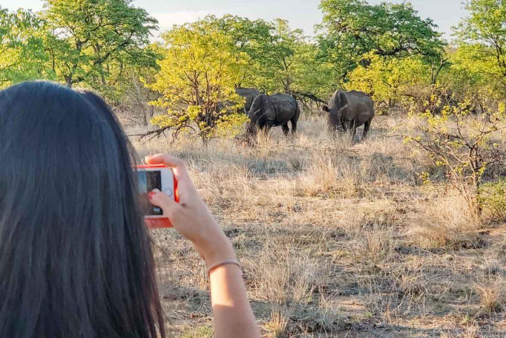 safari-kruger-national-par