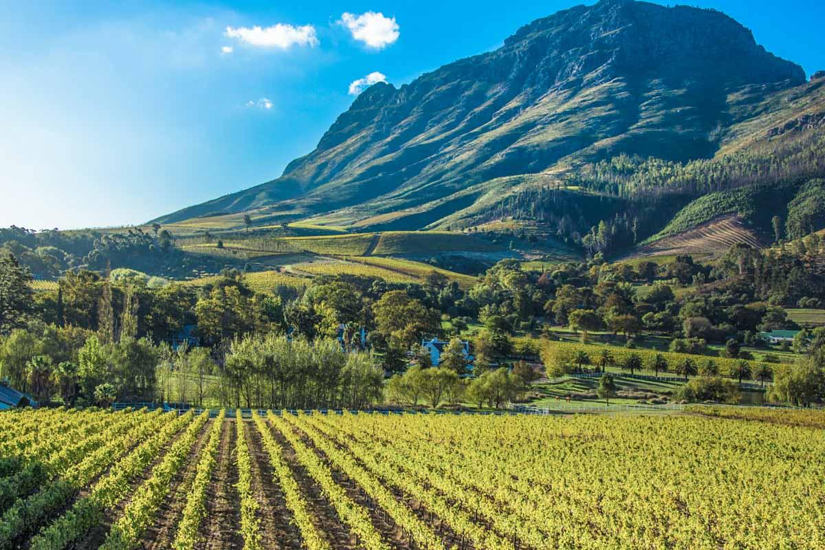 stellenbosch africa do sul