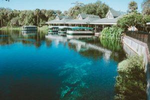 O que fazer em Ocala, na Flórida: springs, tirolesa e muita aventura!