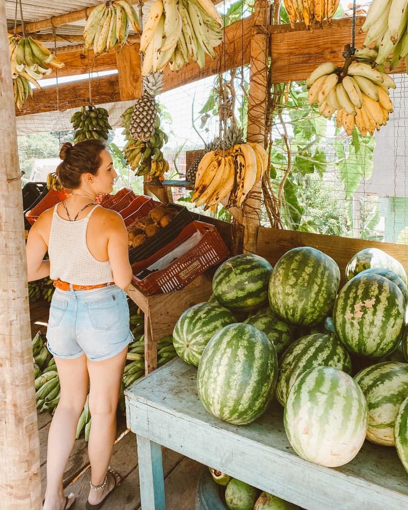 barraca de coco em serra grande (bahia)