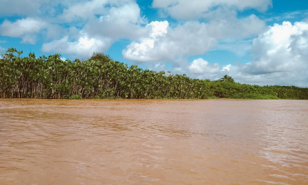 ilha das canárias delta do parnaíba
